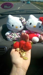 Travel munchies in the kitty car